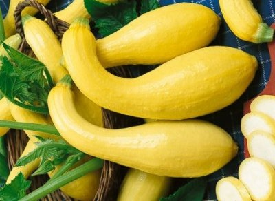 Squash, summer, crookneck and straightneck, canned, drained, solid, without salt