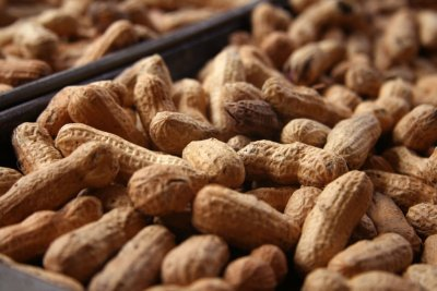 Peanuts, Roasted, No Salt