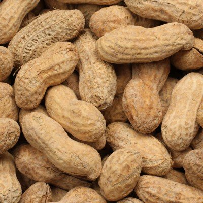 Peanuts, Salted In-Shell, Dry Roasted, Super Size