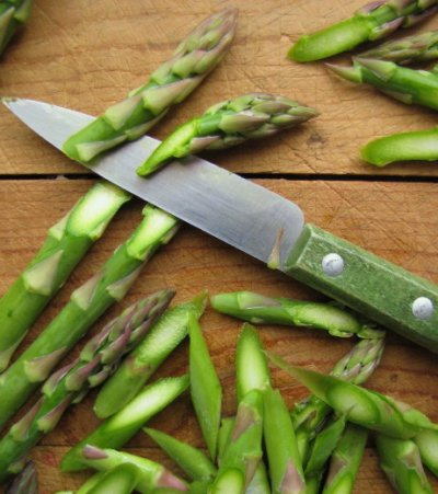 Asparagus, Cut Spears