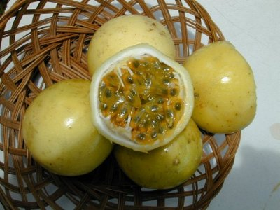 Passion Fruit, Retailer Assigned