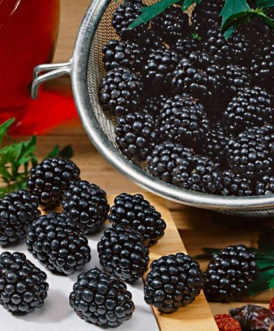 Blackberries, Fresh