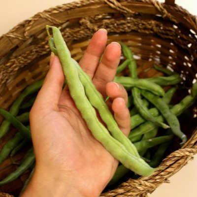 Green Beans, Large