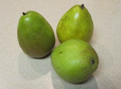 Pear, Anjou, Small