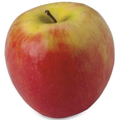 Apple, Cripps, Pink, Large