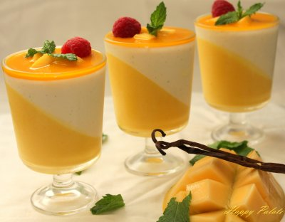 Mango Yogurt, Like It