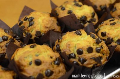 Chocolate Chip Muffin-FL
