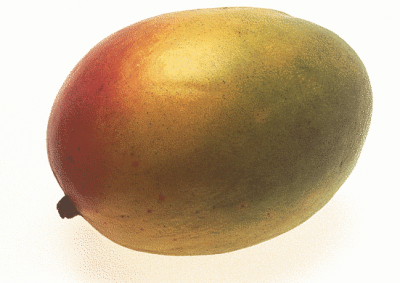Mango, Retailer Assigned