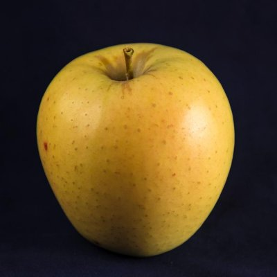 Organic, Apple, Golden, Delicious, Large