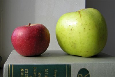 Organic, Apple, Stayman, Large