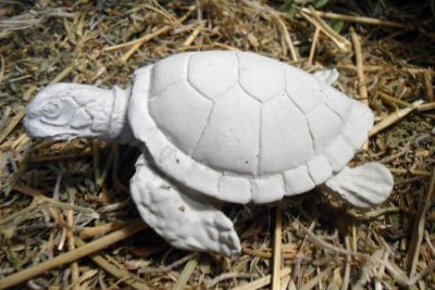 Turtle Concrete-Mini