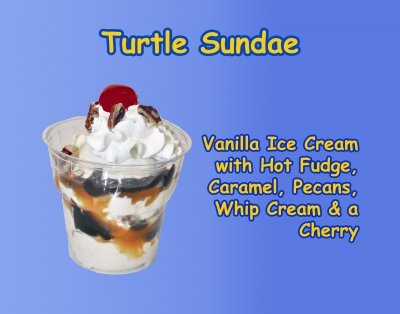 Turtle Sundae-Regular