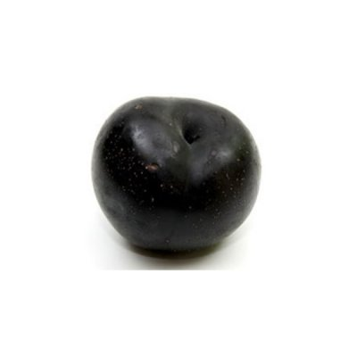 Organic, Plum, Black, Large, Includes: Ambra, Black, Beaut, Prima, Black, Blackamber, Black, Torch, Catalina, Challenger, Black, Diamond, Friar, Royal, Diamond, Black, Knight, Freedom, Black, Flame, Howard, Sun, Angeleno