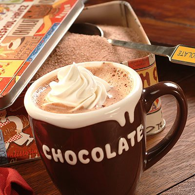 Hot Chocolate with Nonfat Milk (Large)