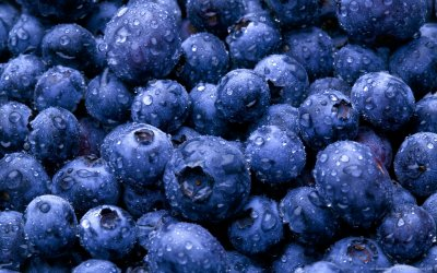 Blueberries, Fresh