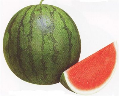 Watermelon, Red, Seedless
