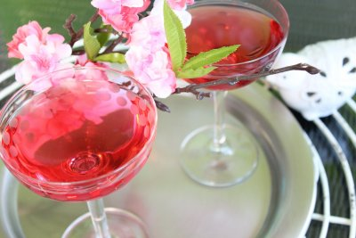 Asian Plum Martini