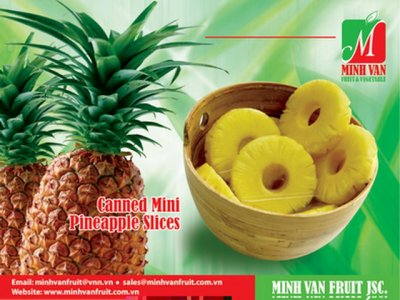 Pineapple Tidbits In Water Sweetened With Monk Fruit Concentrate