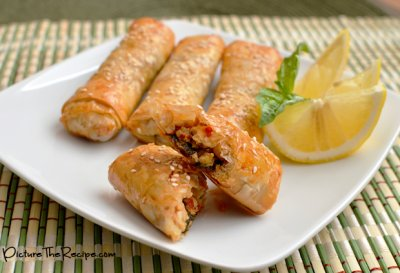 Thai Chicken Spring Roll