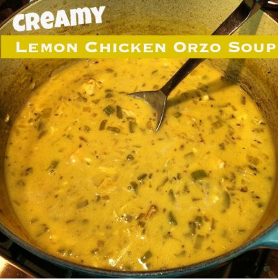 Kids Lemon Chicken Orzo Soup, Kids