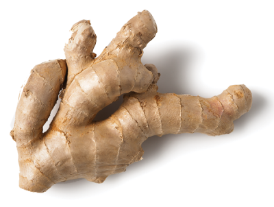 Ginger Root, Ground
