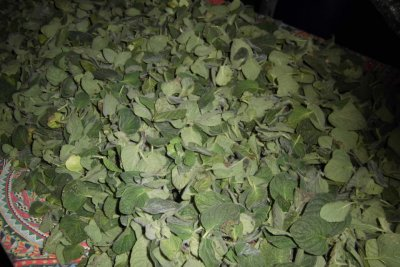 100% Organic Oregano Leaves
