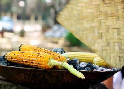 Roasted Corn, Original
