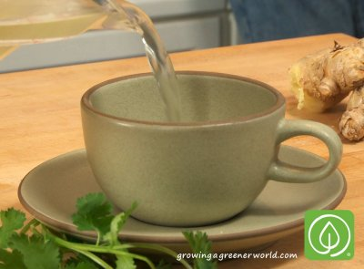 Green Tea, Green Ginger