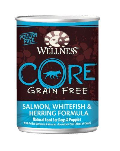 95% Salmon Pate, Complete And Balanced Nutrition For Cats