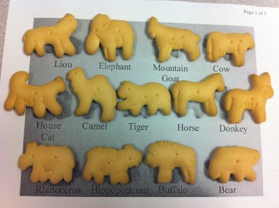Organic Oatmeal Animal Crackers