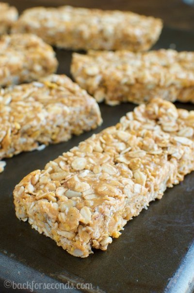 Chewy Granola Bars - Oatmeal Raisin