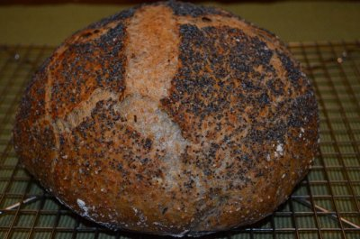 Multi Seed Bread, Early Bird, Organic