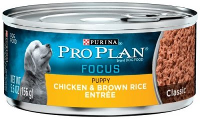 Dog Food Wet, Senior 7+ Chicken & Rice Entree 13 Oz