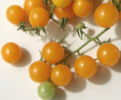 Organic, Tomato, Regular, Yelllow, On The Vine Truss