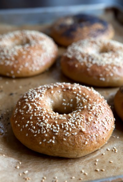 Hole Wheat Bagels